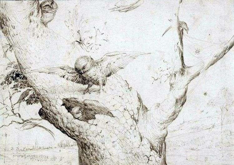 Гнездо сов   Иероним Босх
