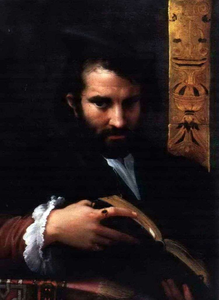 Портрет мужчины с книгой   Франческо Пармиджанино