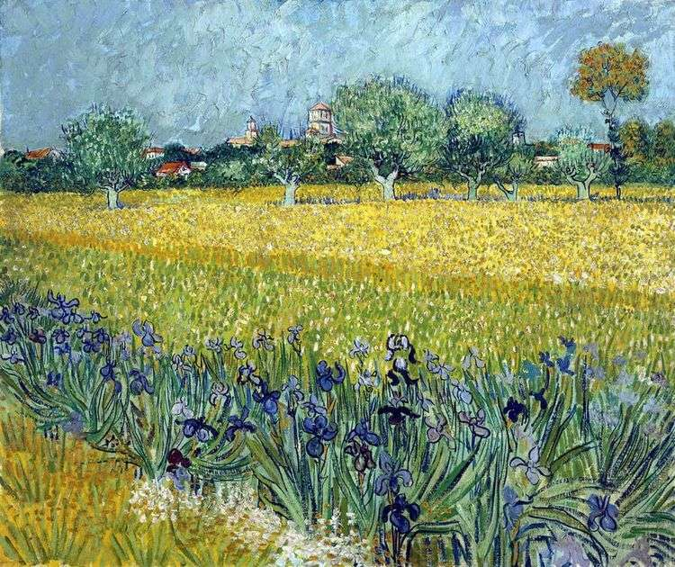 Вид на Арль с ирисами на переднем плане   Винсент Ван Гог