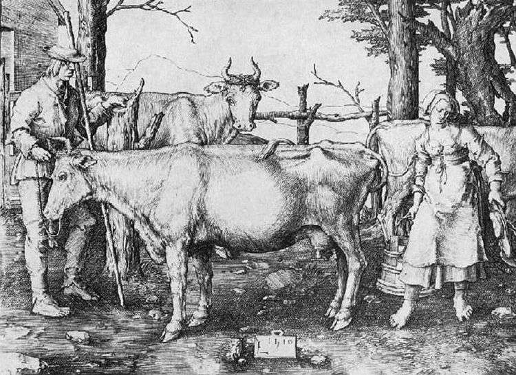Коровница   Лукас ван Лейден