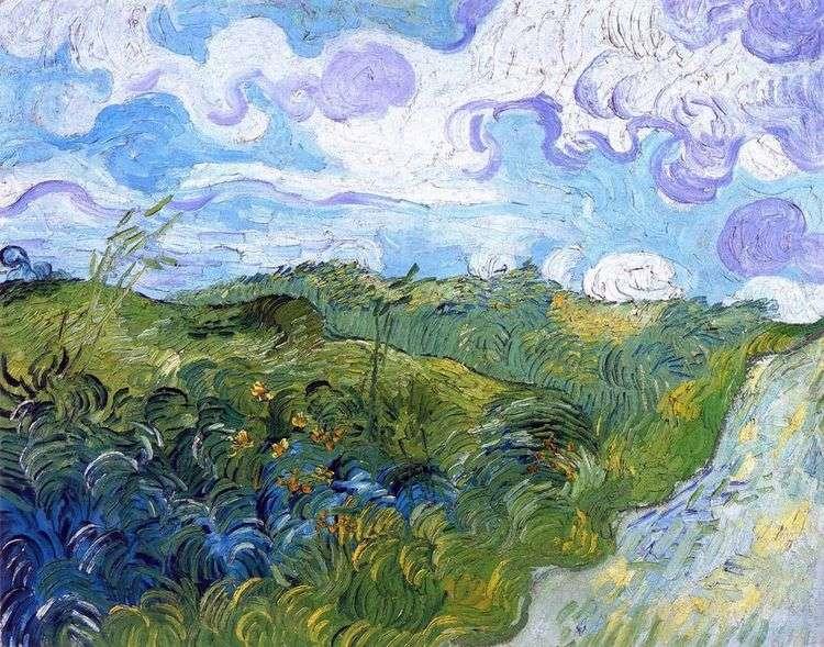 Зеленые поля пшеницы   Винсент Ван Гог