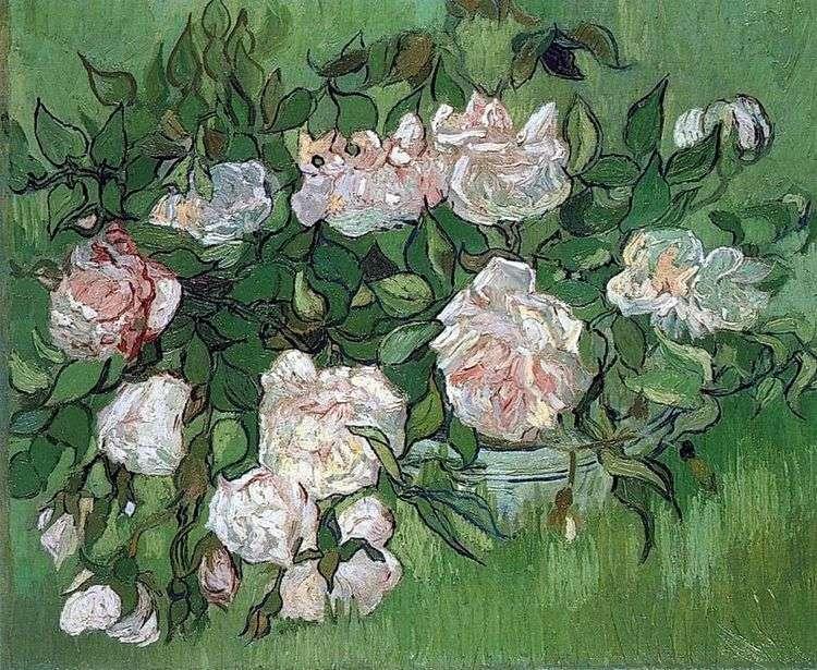 Натюрморт: розовые розы   Винсент Ван Гог