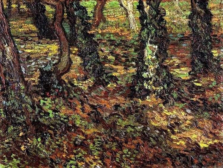 Стволы деревьев с плющом   Винсент Ван Гог