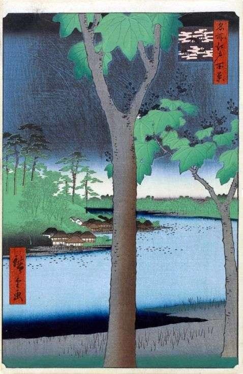 Акасака, Плантация павловний   Утагава Хиросигэ