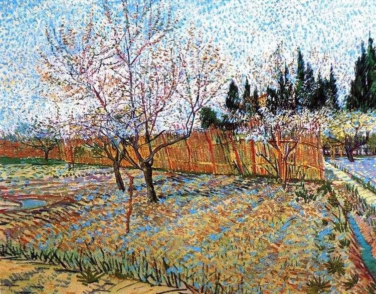 Фруктовый сад с цветущими персиками   Винсент Ван Гог