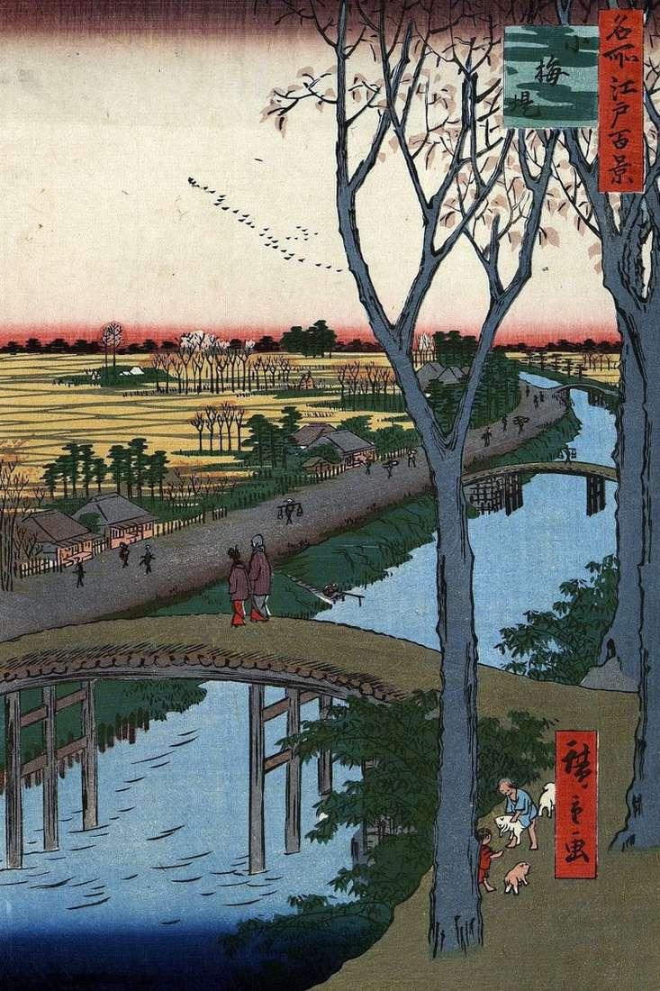 Набережная Коумэ   Утагава Хиросигэ