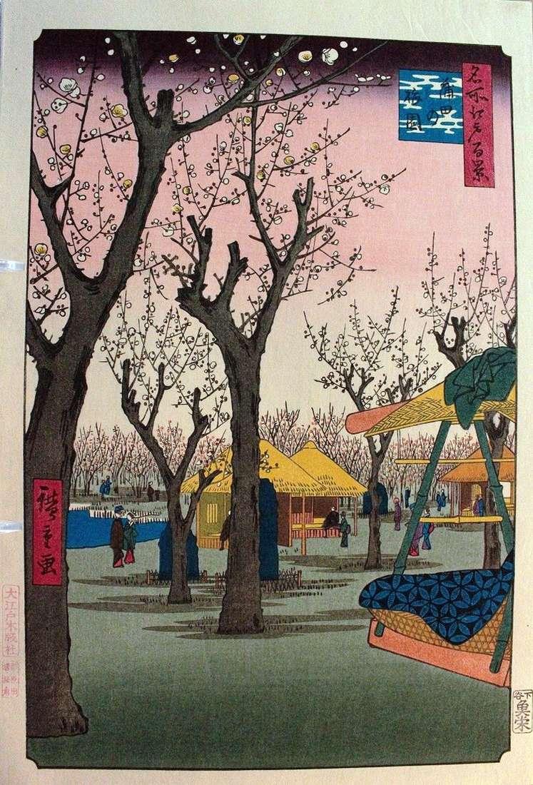 Сливовый сад в Камата   Утагава Хиросигэ