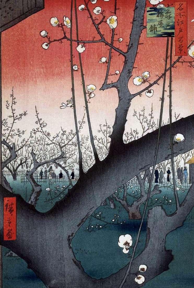Сливовый сад в Камэйдо   Утагава Хиросигэ