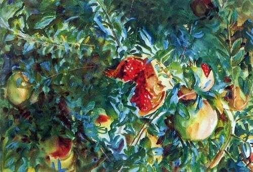 Гранатовое дерево   Джон Сарджент