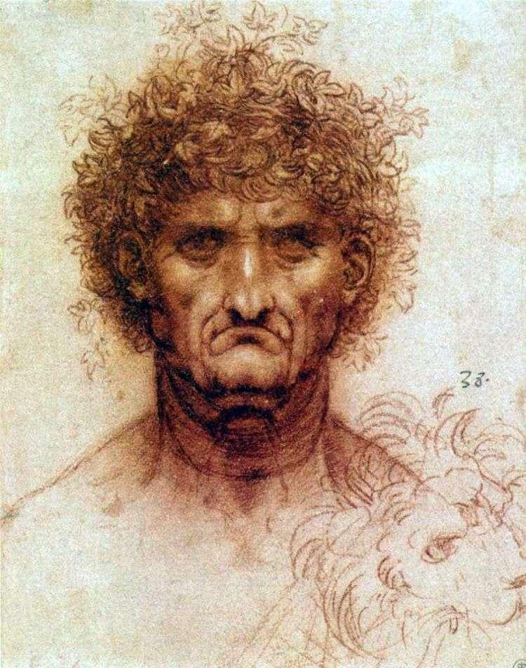 Голова человека и льва   Леонардо да Винчи