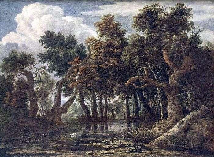 Болот   Якоб ван Рейсдал