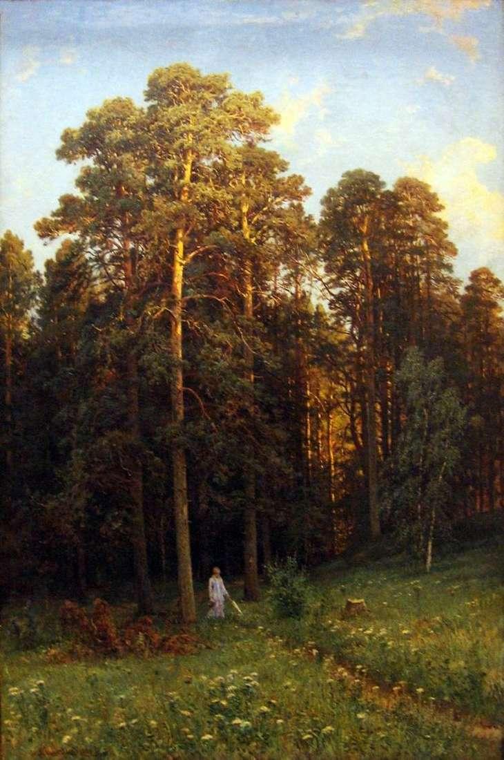 На опушке соснового леса   Шишкин